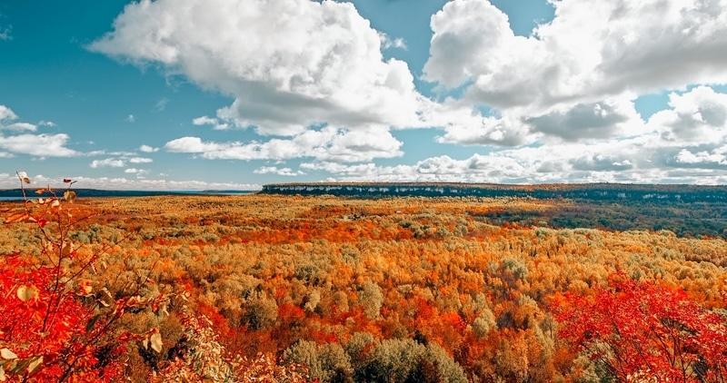 Bruce Peninsula in the fall