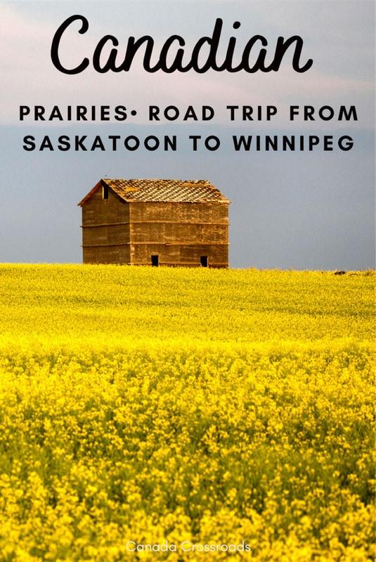 Pin for Road trip from Saskatoon to Winnipeg MN