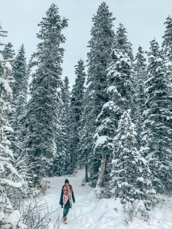 Winter Lake Louise strolls