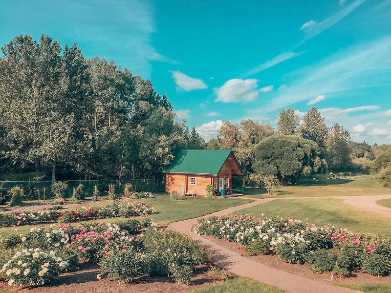 Devonian Gardens Devon