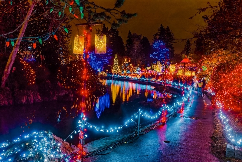 Path Blue Red Yellow Christmas Trees Lights Reflection Lake Van Dusen Garden Vancouver British Columbia Canada