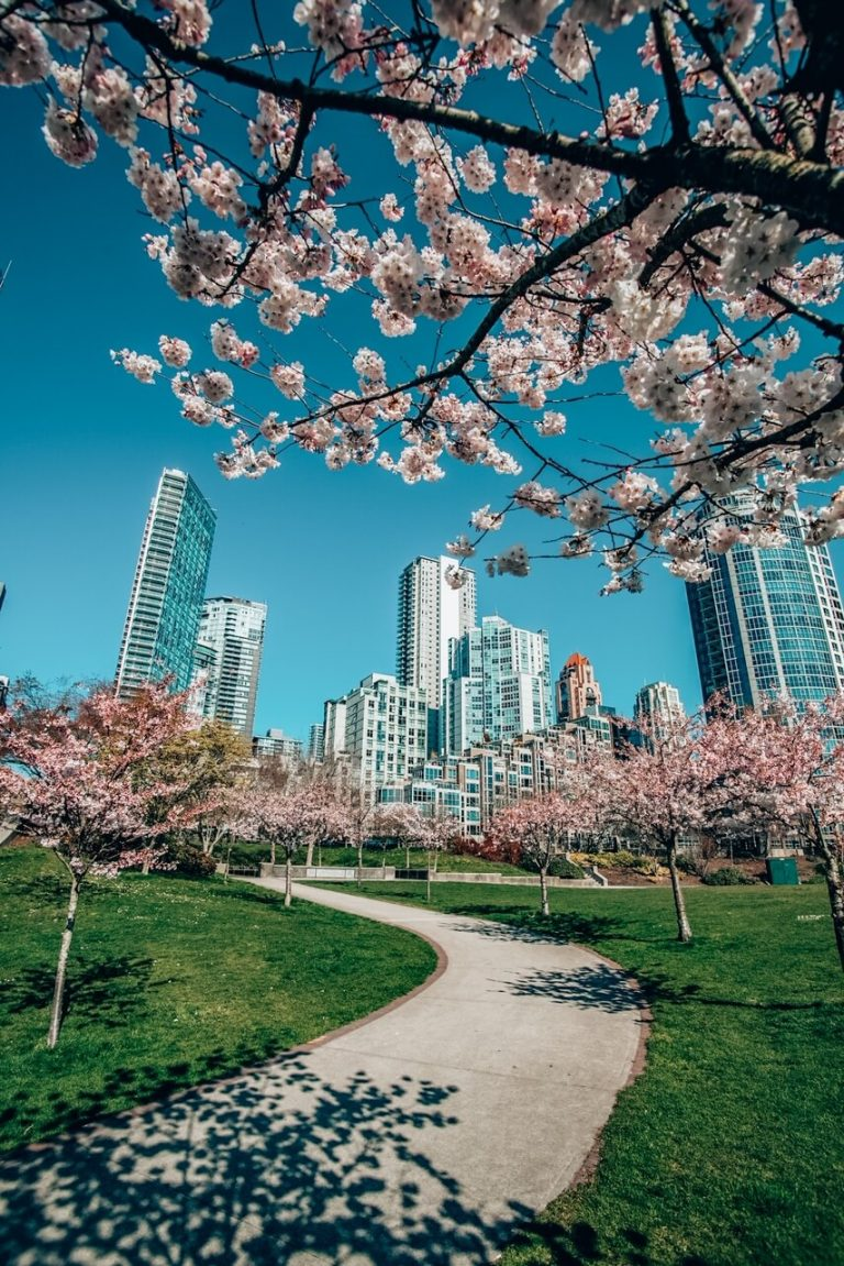 Spring in Canada: Destinations & Travel Tips