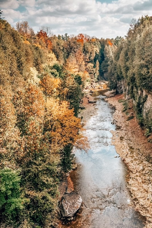 Elora Gorge Conservation park, head there for some easy hikes from Toronto