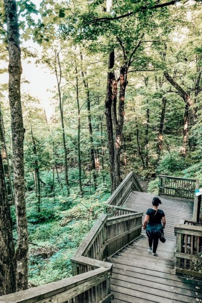 Discover these easy hikes near Toronto, from national, provincial parks to urban centers; there are plenty of options to choose from.