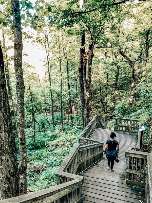 19 Absolute Best & Easy Hikes Near Toronto
