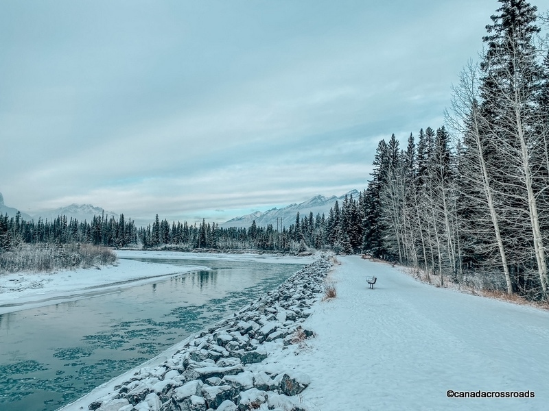 Admire the snowy landscape - Bow Valley Trail