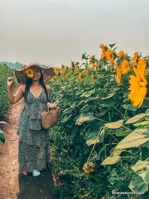 Girl at the sunflower field